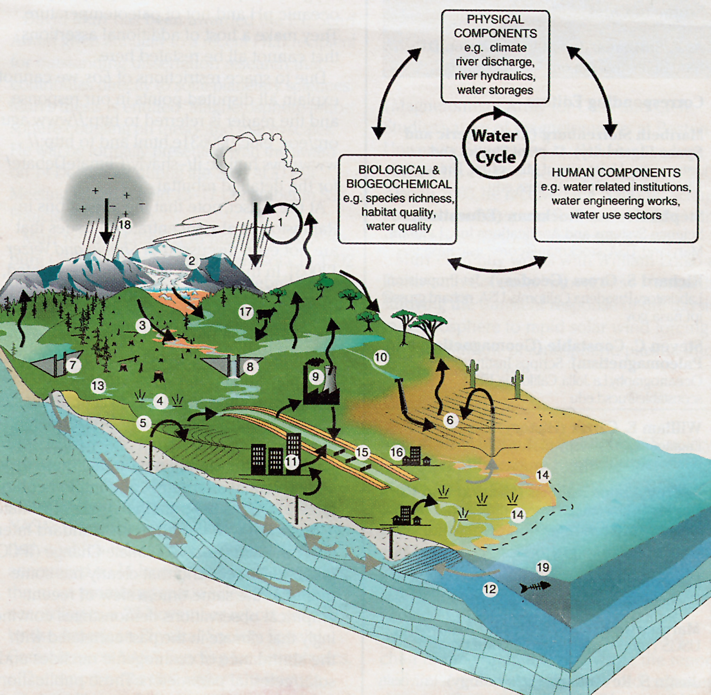 Is the hydrologic cycle sustainable conclusion what becomes of water ccuart Image collections